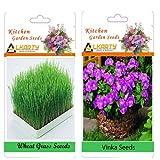 Alkarty Wheatgraas And Vinca Seeds Pack Of 20 (Summer)