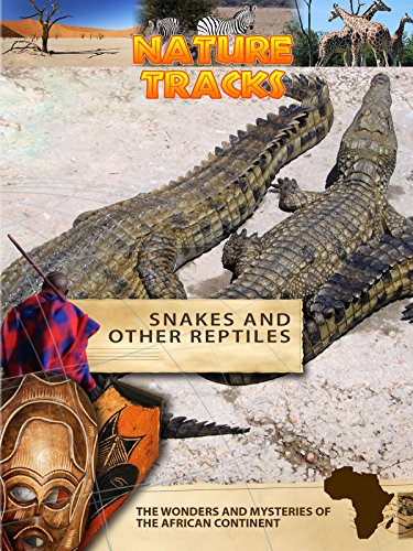 nature-tracks-snakes-and-other-reptiles