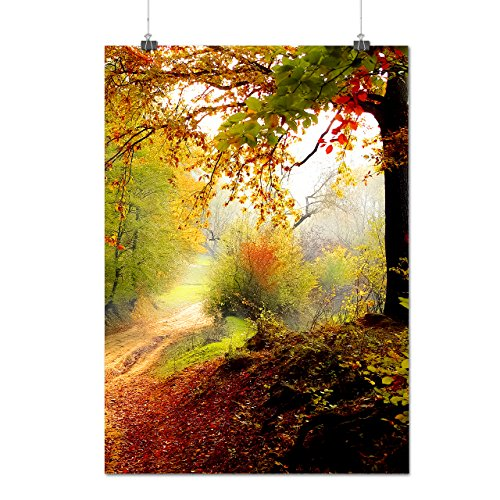 colorful-autumn-tree-late-fall-matte-glossy-poster-a2-60cm-x-42cm-wellcoda