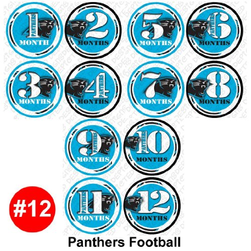 FOOTBALL PANTHER Baby Month Onesie Stickers Baby Shower Gift Photo Shower Stickers, baby shower gift by OnesieStickers