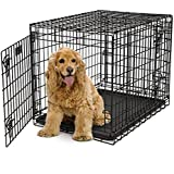 MidWest Ultima Pro Series Dog Crate 31 Inches by 22 Inches by 24 Inches