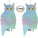 Bird Blinder Reflective Hanging Owl - Pest Repellent (2 pack)