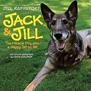 Jack Jill The Miracle Dog With A Happy Tail To Tell from Collins