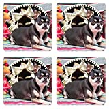 Liili Natural Rubber Square Coasters 4 Pieces Per Order Image Id: 13168129 Cinco De Mayco Mexican Chihuahua Celebrating With Friends