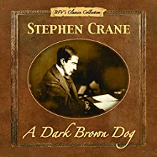 A Dark Brown Dog Audiobook by Stephen Crane Narrated by Michael Pearl