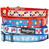 Blueberry Pet 3/8-Inch Designer Basic Polyester Nylon Puppy Dog Collar with Vibrant Triangle Pattern, X-Small