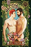 img - for Spring Affair (Seasons of Love Book 1) book / textbook / text book