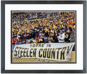 Pittsburgh Steelers Heinz Field NFL Photo 12.5 x 15.5 Framed by NFL