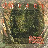 Vale do Javari (Instrumental)