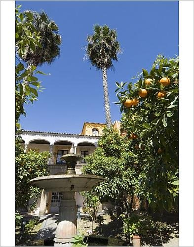 Photographic Print Of The Gardens Of The Real Alcazar