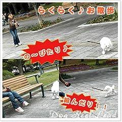 犬の散歩に■伸びたり縮んだり犬のリード(散歩ひも)■ライト付きリールリード(斑)