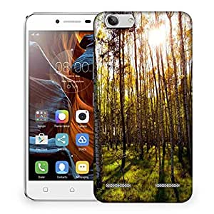 Snoogg Clean Forest Designer Protective Phone Back Case Cover For Lenovo K5 Vibe
