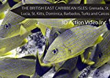 img - for British East Caribbean Isles Grenada St. Lucia St. Kitts Dominica Barbados Turks and Caicos (with Franko Maps electronic Fish ID Cards and Maps) book / textbook / text book