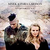 MNEK & Zara Larsson - Never Forget You