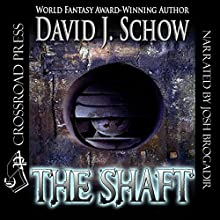 The Shaft Audiobook by David J. Schow Narrated by Josh Brogadir