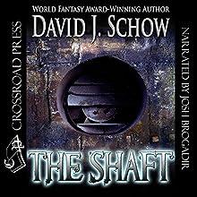 The Shaft | Livre audio Auteur(s) : David J. Schow Narrateur(s) : Josh Brogadir