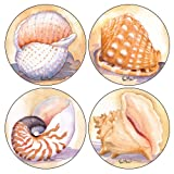 "CoasterStone AS820 Absorbent Coasters, 4-1/4-Inch, ""Shells"", Set Of 4"