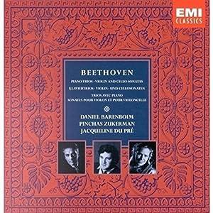 Beethoven : Trios pour piano, violon & violoncelle / Sonates pour violon / Sonates pour violoncelle (Coffret 9 CD)