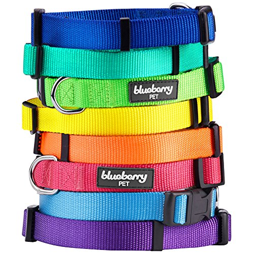 Blueberry-Pet-Classic-Solid-Color-Nylon-Dog-Collar-Made-For-Last-Matching-Leash-Harness-Available-Separately