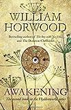 Awakening (Hyddenworld Quartet 2)
