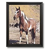 Western Cowboy Pinto Horse Kids Room Animal Home Decor Wall Picture Black Framed Art Print