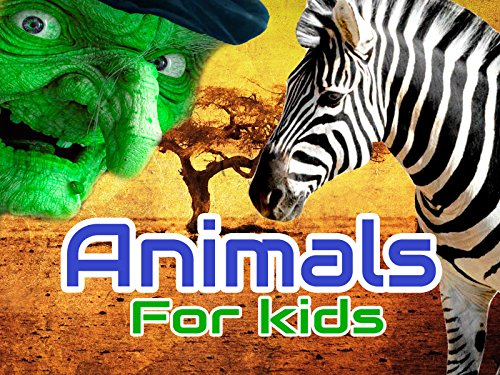 Animals for kids - Season 1