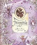 img - for Fairyopolis: A Flower Fairies Journal book / textbook / text book