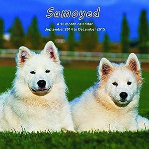 W.v. Samoyed Samoyed 2015 Wall Calendar