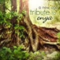 A New Age Tribute To Enya