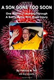 img - for A Son Gone Too Soon: One Mother's Journey Through A Son's Battle With Brain Injury book / textbook / text book
