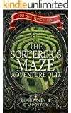 The Sorcerer's Maze: You Say Which Way (Adventure Quiz Book 1)