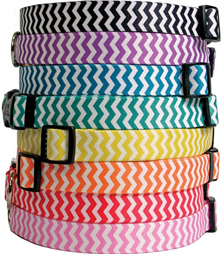 chevron-stripes-dog-collar-watermelon-small-10-to-14-inch-with-tag-a-long-id-tag-system