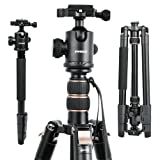 66'' DSLR Camera Tripod, Professional Compact Travel Tripod,Lightweight Movie Video Projector Stand With 360 Degree Ball Head, Bubble Level, Quick Plate And Bag For Nikon Canon Sony Fuji Other Cameras (Color: Black+Gold, Tamaño: Taller Stonger Compact)