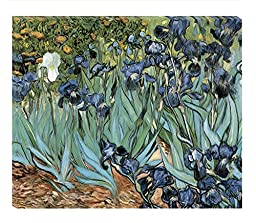Vincent van Gogh\'s painting of Irises, 24x20 Inches on Archival Canvas. Art Print for Home Decor, for the Home, Office or As a Gift. Royalty Free Wall Art by The Gallery Wrap Store.