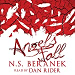 Angels Fall | N.S. Beranek