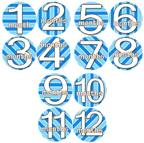 KARTIKA BLUES 1-12 Month Baby Monthly One Piece Stickers Baby Shower Gift Photo Shower Stickers