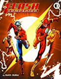 img - for The Flash Companion book / textbook / text book