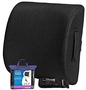 Elephix Memory Foam Lumbar Support Cushion Lower Back Pain Relief Orthopedic Posture Pillow | Travel Case and Extension Strap Included