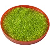 Eshoppee Green Family Colors Glass Seed Beads Pot 100 Gm (approx 2800 Beads) For Jewllery Making And Home Decoration...