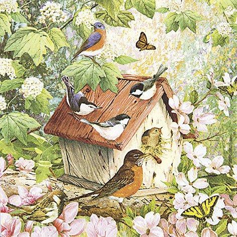 20-Servietten-Busy-Birdhouse-Bewohntes-Vogelhaus-Frhling-33x33cm