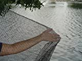 DeWitt Pond Netting, 12 by 20-Feet