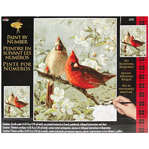 Plaid Creates Paint by Number Kit (16 by 20-Inch), 21737 Cardinals & Cherry Blossoms