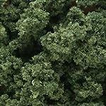 WOODLAND SCENICS FC683 Clump Foliage...