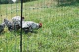 Pet Products - Kerbl 292219 Gefl�gelnetz 25 m, 112 cm Doppelspitze, ohne Strom, gr�n