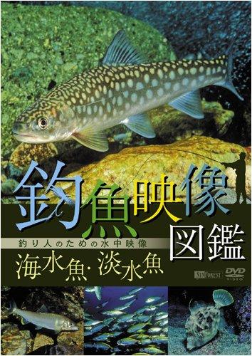 釣魚映像図鑑[海水魚・淡水魚]釣り人のための水中映像