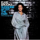 Sunshine After the Rain: the Collection (2 CD/40-tracks)