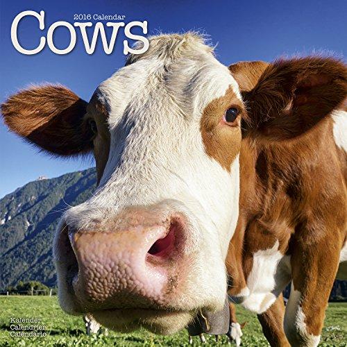 Cows Calendar - 2016 Wall calendars - Animal Calendar - Monthly Wall Calendar by Avonside PDF