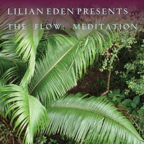 The Flow: Meditation