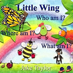 Little Wing Audiobook