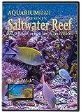 Aquarium for Your Home: Saltwater Reef an Aquarium for Your Television